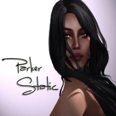 Parker Static Poster