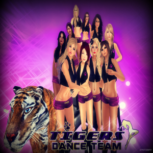 Tigers Dance Team Group Pic